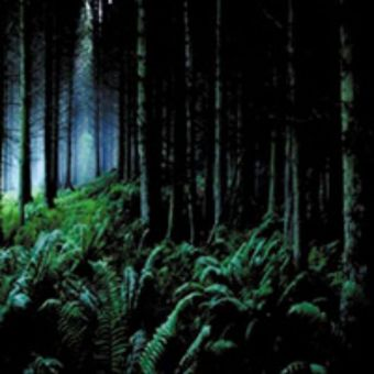 Astarot - As Leaves Fall [CD]