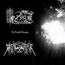 Heilnoz / Drengskapur - The Forest's Arcanum [CD]