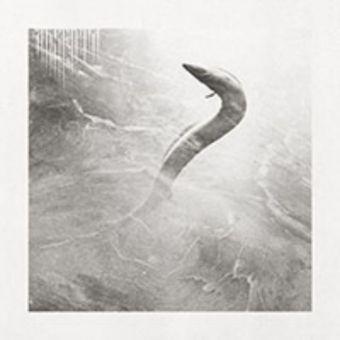 Absenta - Eel [CD]