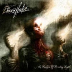 Ebonylake - In Swathes of Brooding Light [CD]