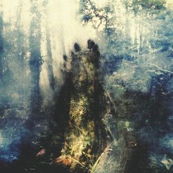 Sylvaine - Wistful [Digipack CD]