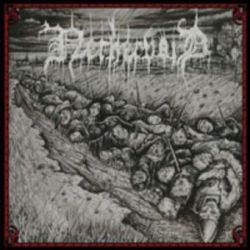 Nethervoid - In Swarms of Godless Wrath [CD]
