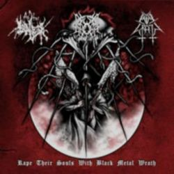 Evil Wrath / The True Endless / Gromm - Rape their Souls with Black Metal Wrath [Digipack CD]